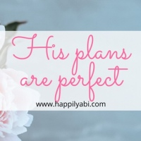 His Plans Are Perfect